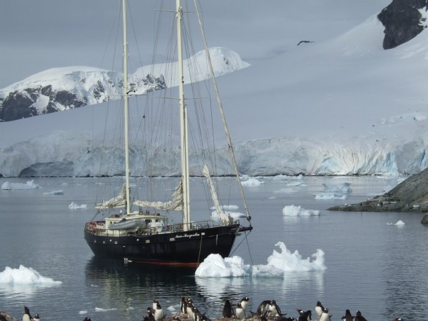 anne-margaretha-waterboat-point-antarctica